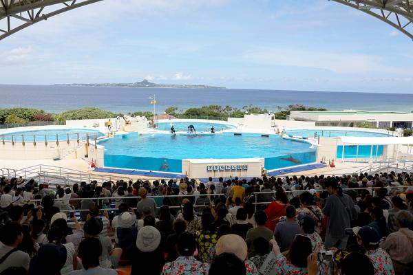沖縄旅行 Ⅱ_c0253556_04255406.jpg
