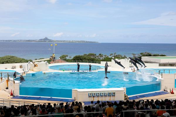 沖縄旅行 Ⅱ_c0253556_04255552.jpg