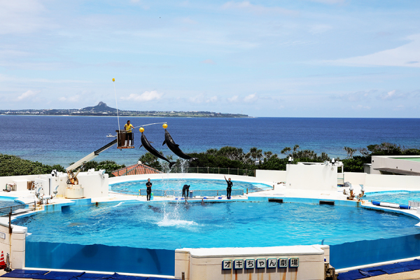沖縄旅行 Ⅱ_c0253556_04255558.jpg