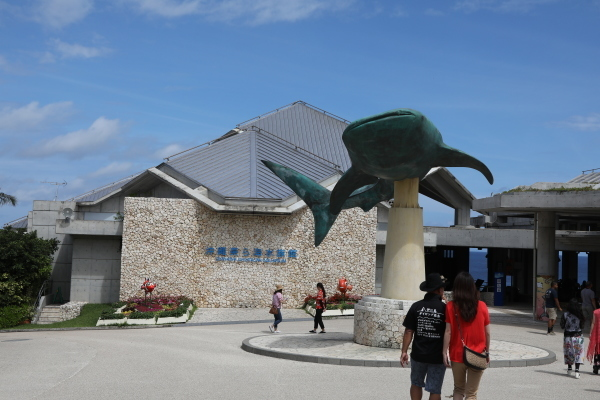 沖縄旅行 Ⅱ_c0253556_04255663.jpg