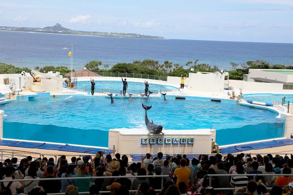 沖縄旅行 Ⅱ_c0253556_04255692.jpg