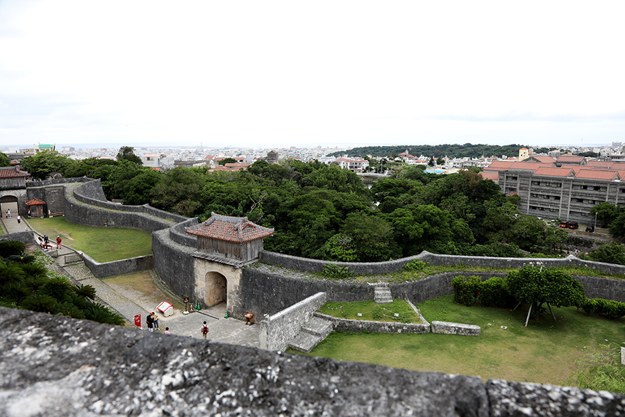 沖縄旅行 Ⅱ_c0253556_05092502.jpg