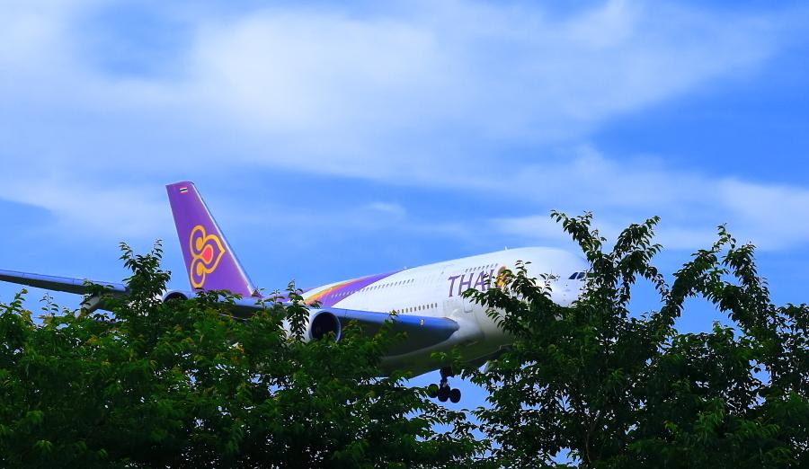 成田市さくらの山公園で観たタイ国際航空機_a0150260_00332824.jpg