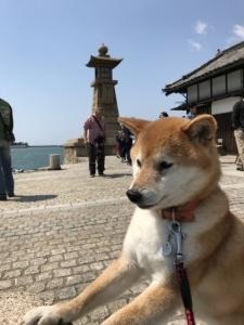 鞆の浦と世羅高原_e0012580_14100991.jpg