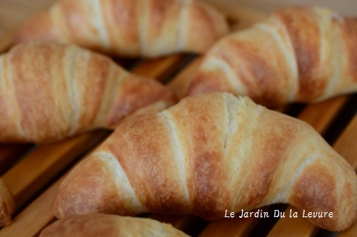 あこ天然酵母でチーズ食パン、パンオナッツ_f0329586_09130975.jpg