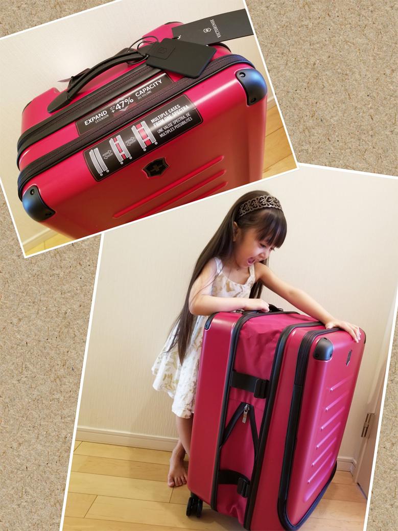 ハワイ島。(新しいスーツケース)_d0224894_14551128.jpg
