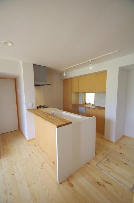 キッチン/対面キッチンのフロント_c0004024_10080690.jpg