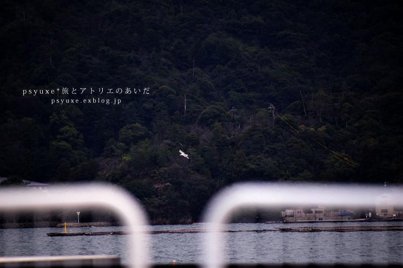 旅 x Photograph / 2018 / #2_e0131432_09594335.jpg