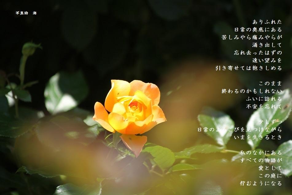 f0351844_14390948.jpg