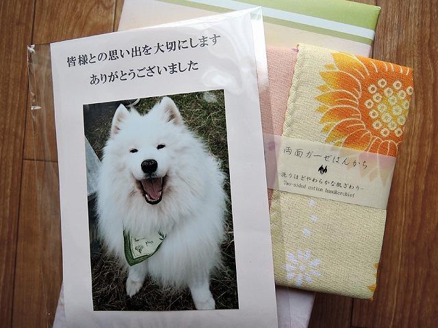 キラキラ笑顔_c0062832_16492543.jpg
