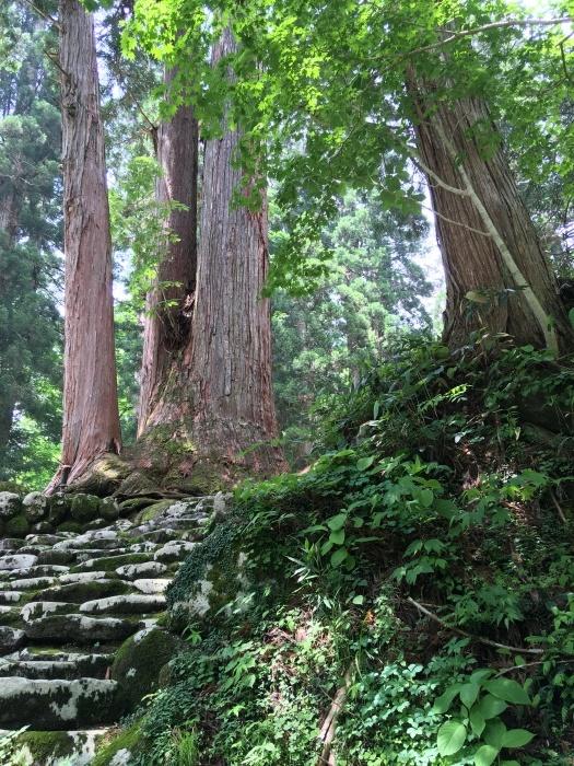 白山中居神社_e0155231_21294845.jpeg