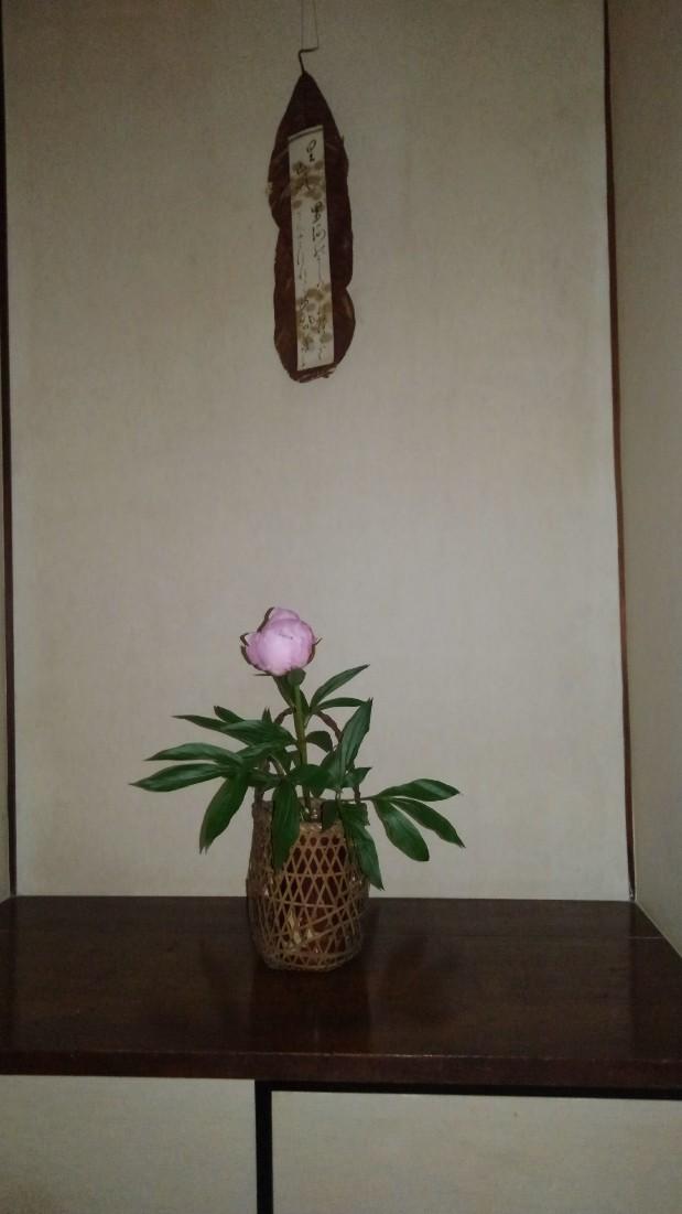 邸内に生けられた花 6月_d0344754_21342862.jpg