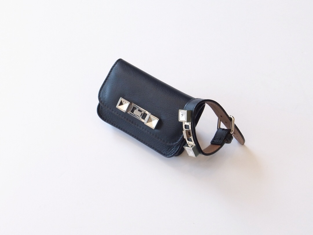 PROENZA SCHOULER PS11 SMALL LEATHER GOODS_f0111683_14473093.jpg