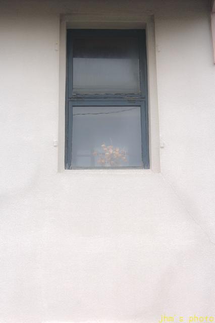 あなたは函館で何を見ているのでしょうか?_a0158797_23171409.jpg