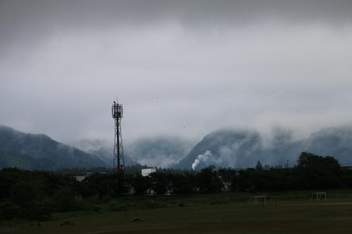 雨上がりの朝の散歩は、TSUTAYAへ_c0075701_06410462.jpg