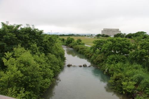 雨上がりの朝の散歩は、TSUTAYAへ_c0075701_06412649.jpg
