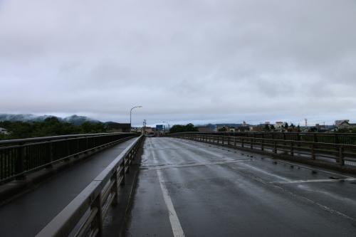 雨上がりの朝の散歩は、TSUTAYAへ_c0075701_06414133.jpg
