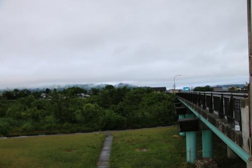 雨上がりの朝の散歩は、TSUTAYAへ_c0075701_06414792.jpg