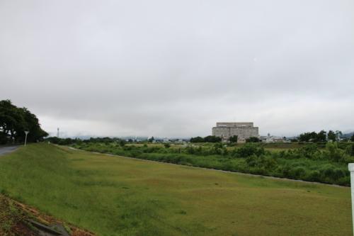 雨上がりの朝の散歩は、TSUTAYAへ_c0075701_06415677.jpg