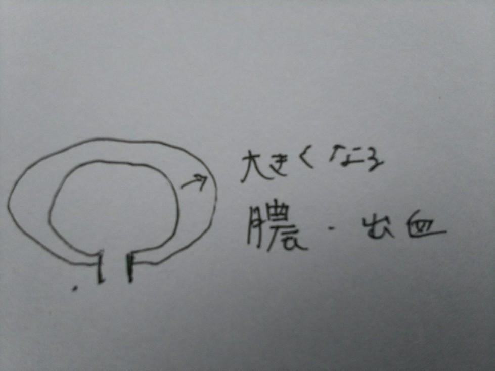 c0136736_11231927.jpg