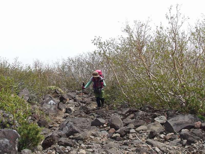 羊蹄山登頂100回達成祝賀登山会、2018.6.10ー同行者からの写真ー_f0138096_20274701.jpg