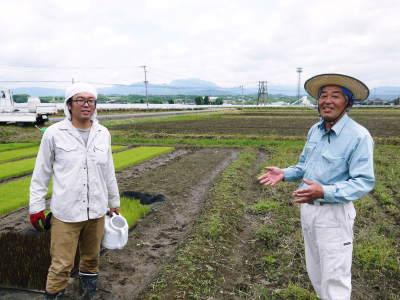 無農薬栽培のひのひかり100%使用の『米粉』大好評販売中!平成30年度の米作り!苗床の様子を現地取材!_a0254656_17470655.jpg