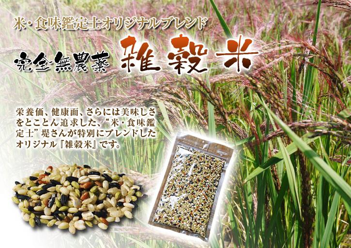 無農薬栽培のひのひかり100%使用の『米粉』大好評販売中!平成30年度の米作り!苗床の様子を現地取材!_a0254656_17574155.jpg