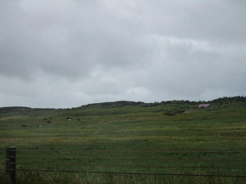 53日目【苫前−稚内】最北の稚内もやはり雨だった!_e0201281_22064999.jpg