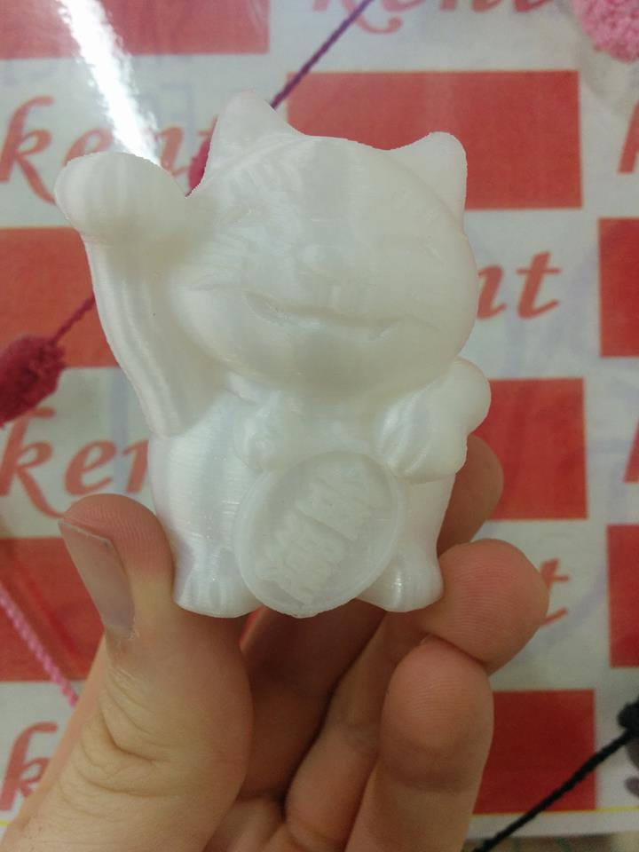3D printer!!(3Dプリンター)来日(^^♪笑_c0345439_21095001.jpg