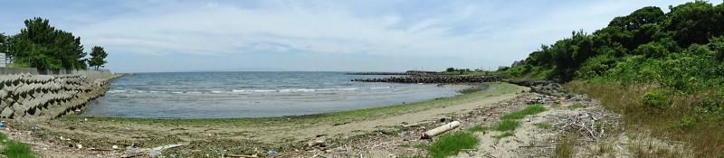 下荘小学校2年生「浜辺の生き物観察」・・・箱作西浜自然海岸_c0108460_20352078.jpg