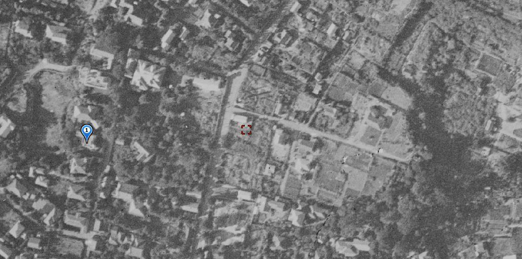 気晴らし猫ネズミ蛙歩き※ガマ池補記、地図、写真追加(2 )_b0116271_12132792.jpg