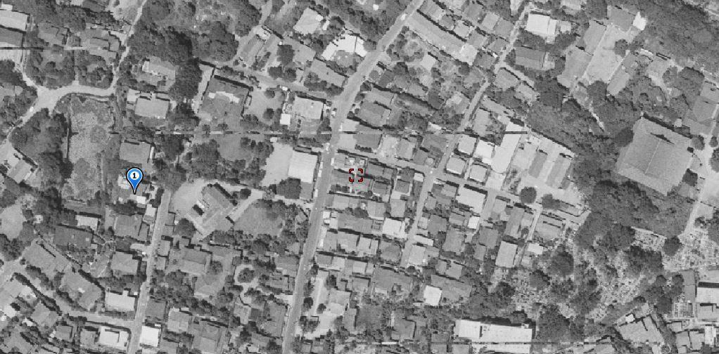 気晴らし猫ネズミ蛙歩き※ガマ池補記、地図、写真追加(2 )_b0116271_12134205.jpg