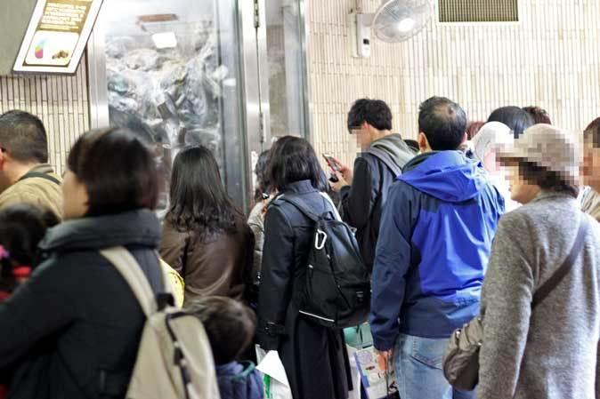 3月の上野動物園~マヌル・ブームとソルジャー・ハシビロコウ_b0355317_22060785.jpg