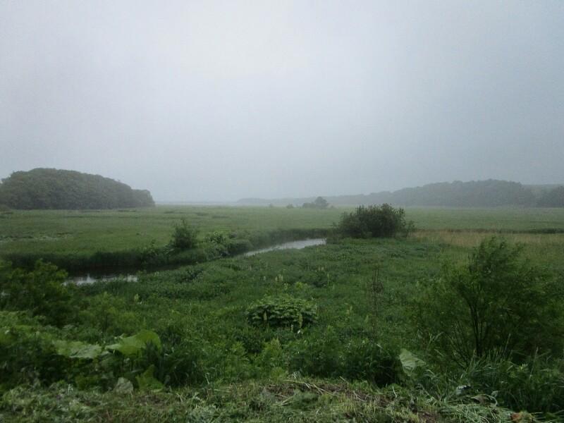 55日目【枝幸−サロマ湖】雨の中、サロマ湖は遠かった。_e0201281_20293262.jpg