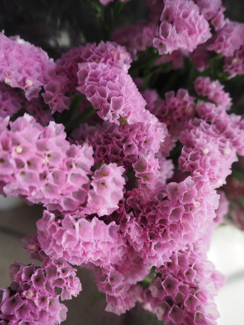 花市場へ仕入れに行きました🚙_d0281783_19141683.jpg