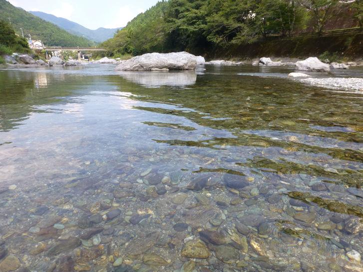 仁淀川編(37):池川(15.8)_c0051620_1656131.jpg