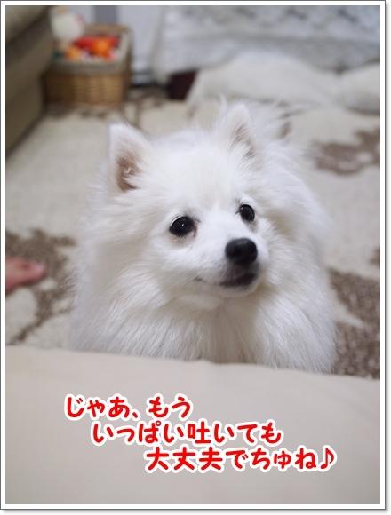 d0013149_23215757.jpg