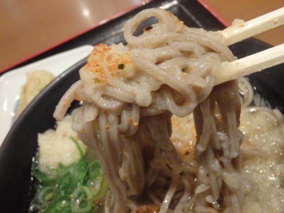 めしや食堂        赤川店_c0118393_12122042.jpg