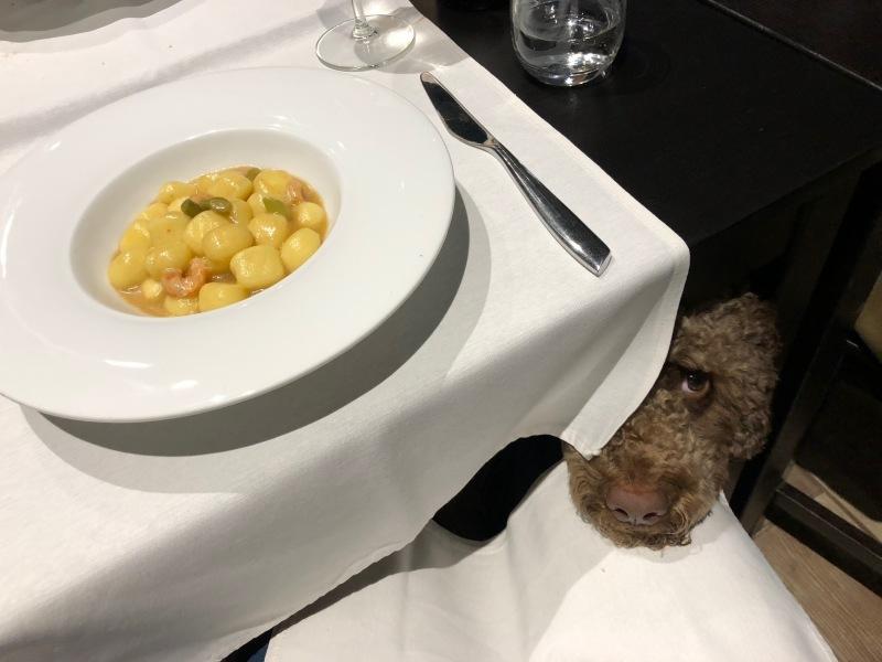 """トリノのシチリア料理レストラン \""""ORTIGIA bistrot オルティージャ ビストロ\""""_b0246303_07145713.jpg"""