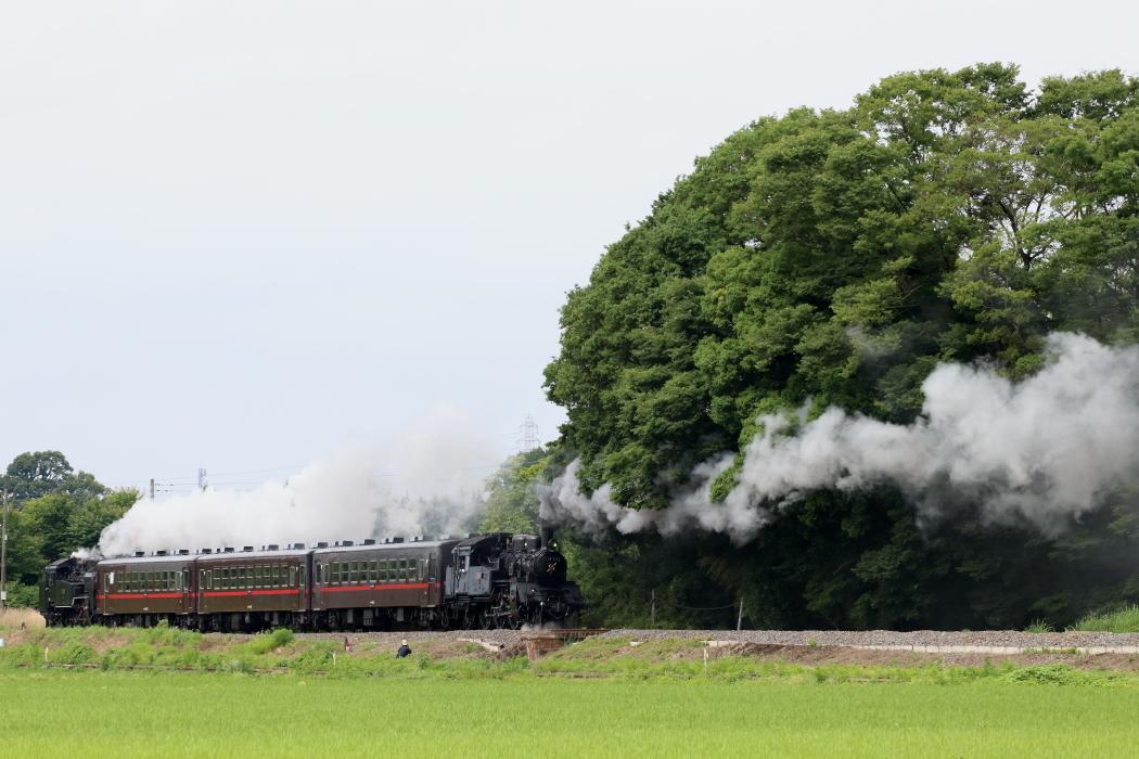 すっぴんの機関車をでっかく撮った - 真岡・2018年重連 -_b0190710_20064881.jpg