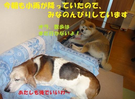 f0121712_00065130.jpg