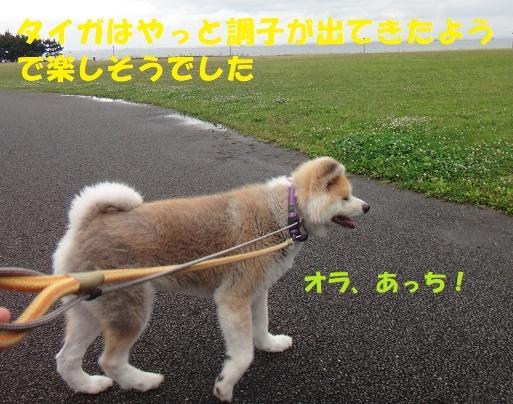 f0121712_00283383.jpg
