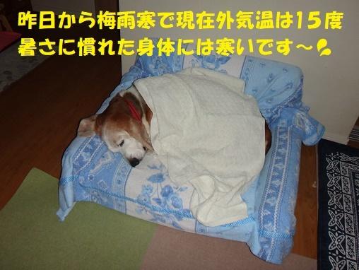 f0121712_01141106.jpg