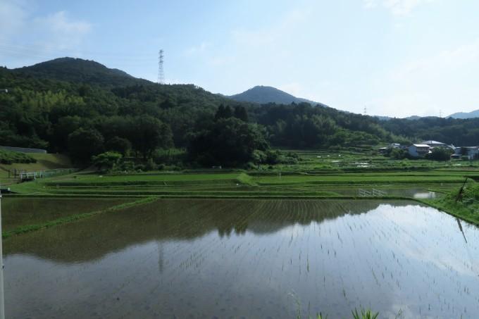 初夏のひとり山歩き_e0348754_11300033.jpg