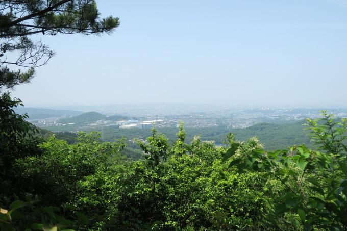 初夏のひとり山歩き_e0348754_12204232.jpg