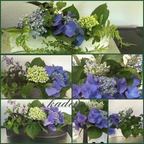 紫陽花との語らい_d0237757_19133633.jpeg