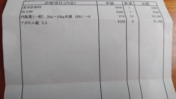 b0306158_15014707.jpg