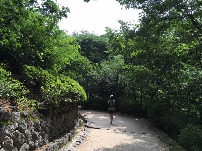 2018.6.14-16 滞在45時間の濃厚Seoul Trip_b0219778_22355017.jpeg
