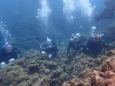 6月18日水納島ファンダイビング&恩納村体験ダイビング_c0070933_21503226.jpg