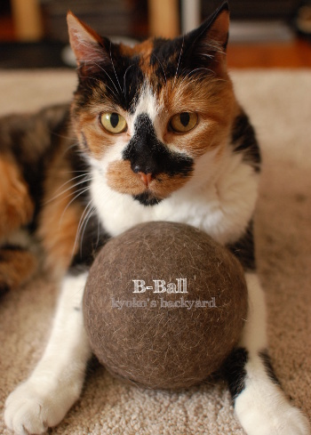 Bボール、ついに100mm超え!_b0253205_03174163.jpg
